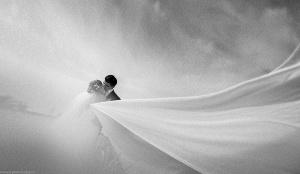 свадебный фотограф в Москве - ла никос-23433